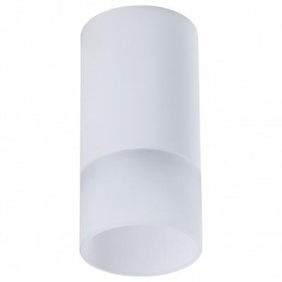 Накладной светильник Maytoni Pauline C007CW-01W