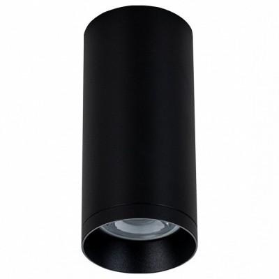 Накладной светильник Maytoni Alfa C010CL-01B