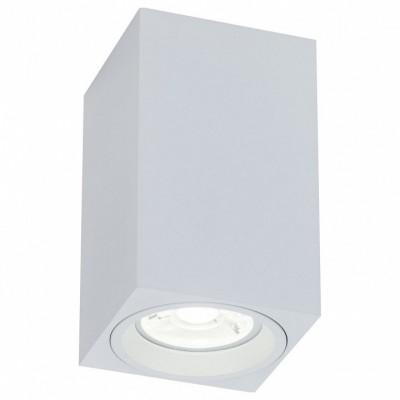 Накладной светильник Maytoni Alfa C011CL-01W