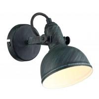 Светильник спот Arte Lamp MARTIN A5213AP-1BG