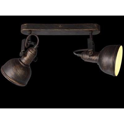 Светильник спот Arte Lamp MARTIN A5213AP-2BR