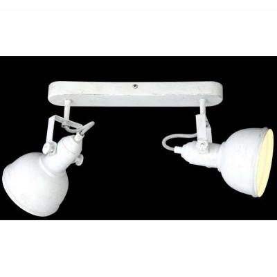 Светильник спот Arte Lamp MARTIN A5213AP-2WG