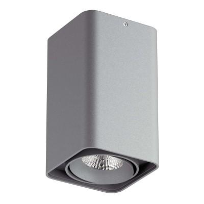 Накладной светильник Monocco 212539